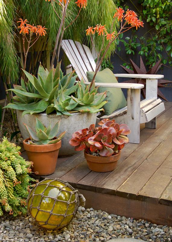 GardenToGo_13.jpg