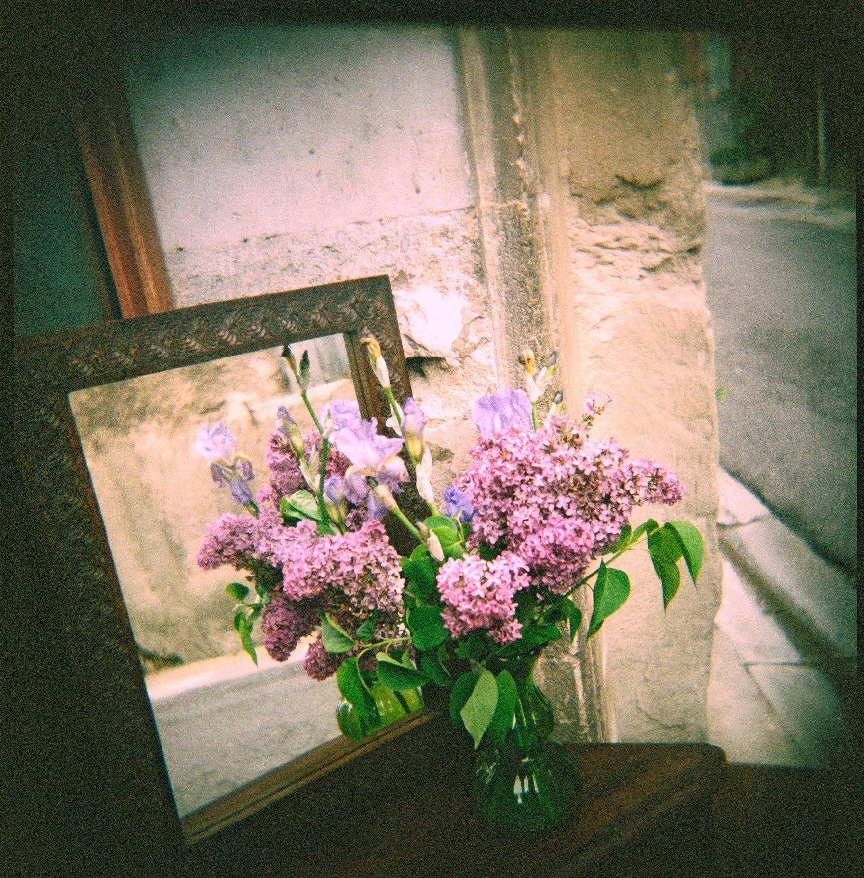 Holga France 84 France#9-01-#2-FlowerMirror