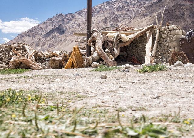 Padmas kleiner Holzverschlag, indem die 33jährige seit Jahren lebt.