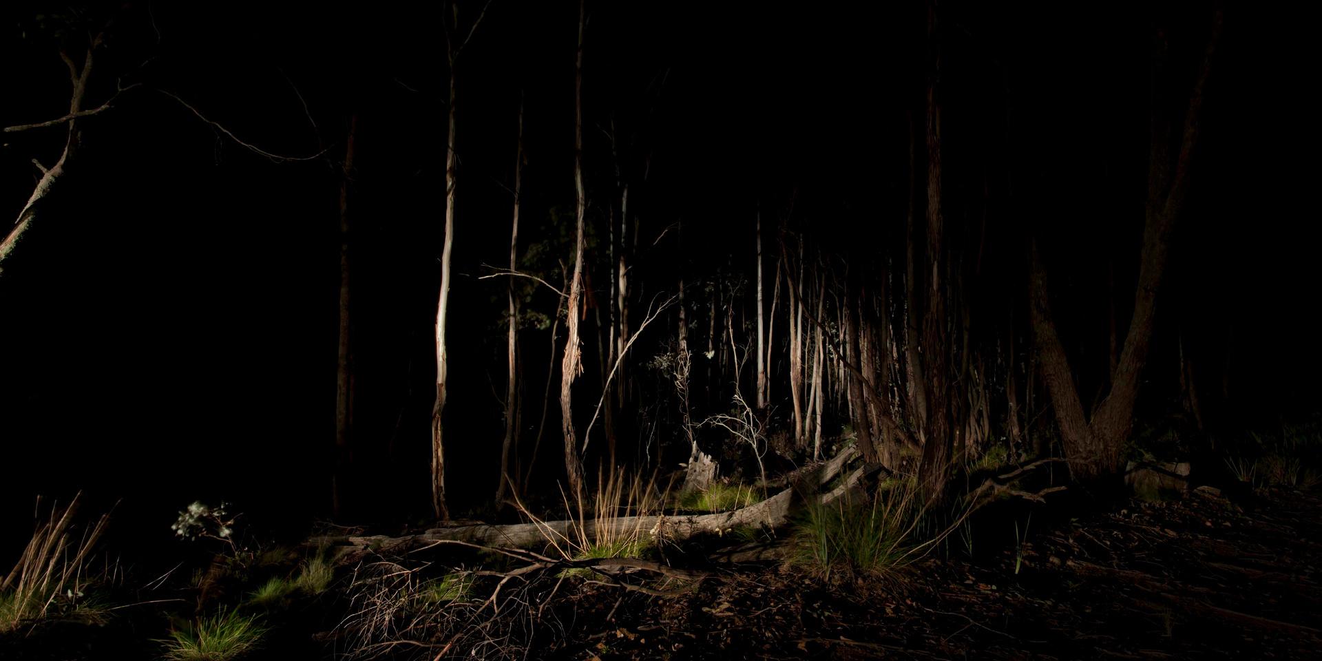 Lightscape #3, 2012