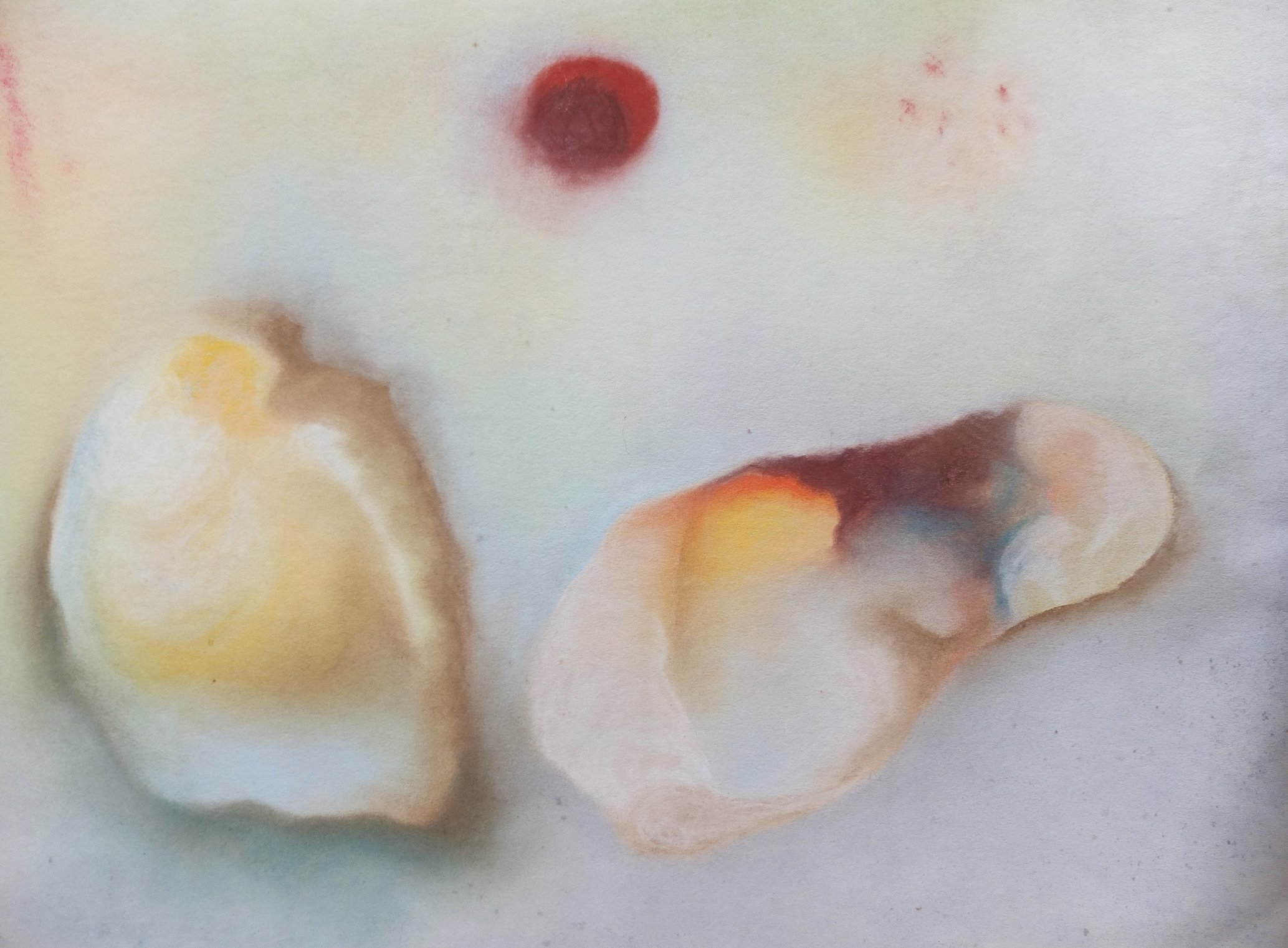Pale Little Shells by Alison Gracie