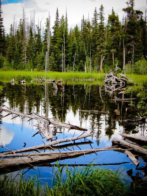 Glacier National Park I