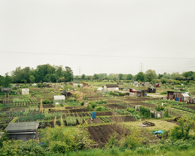 Allotments, Leicestershire