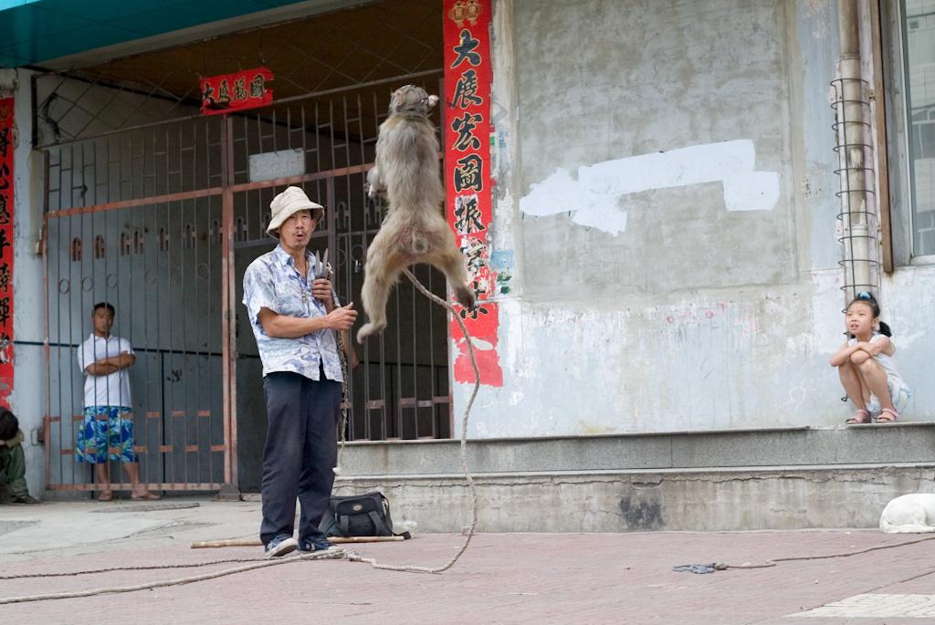china24.jpg