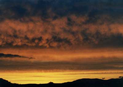 Ben Sunset 2 by Alison Gracie