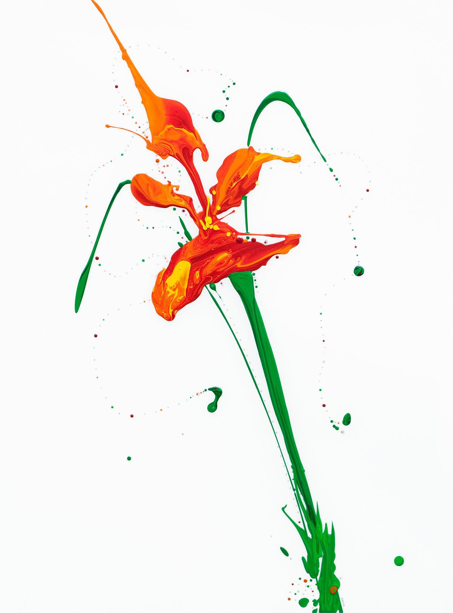 Flora XIV