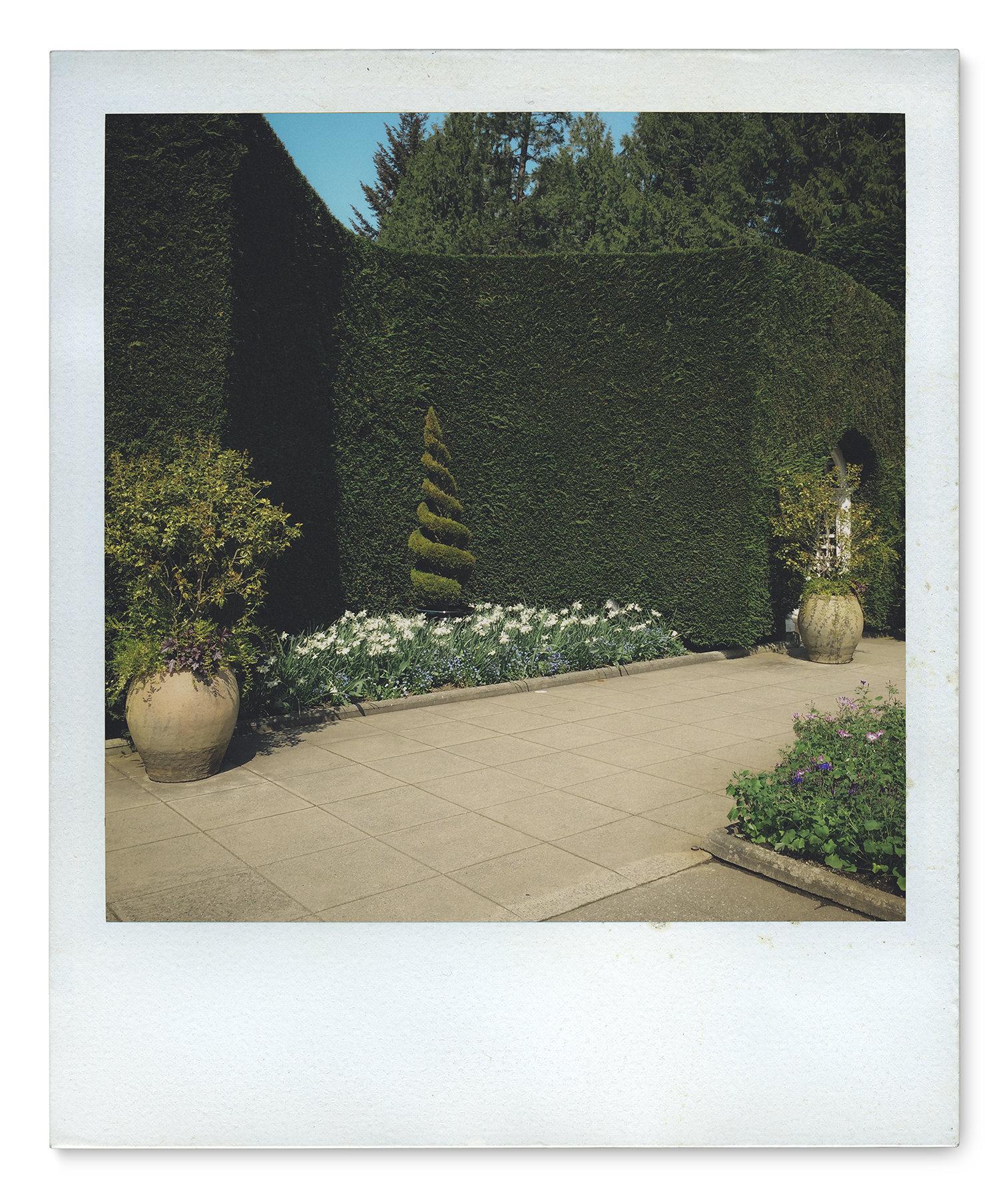 058_Polaroid SX70_IMG_1882.jpg