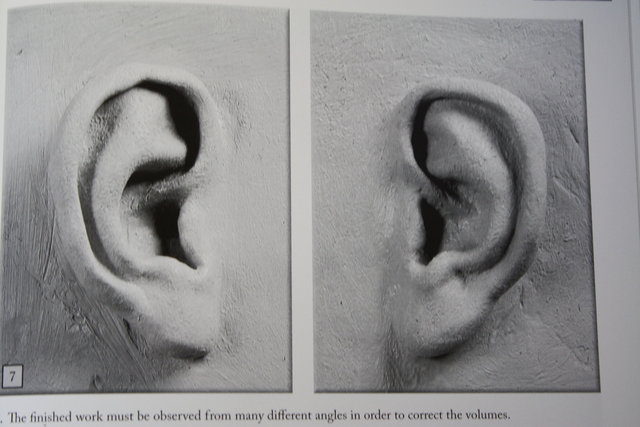 MAKING EARS   copyright by Philipe Faraut