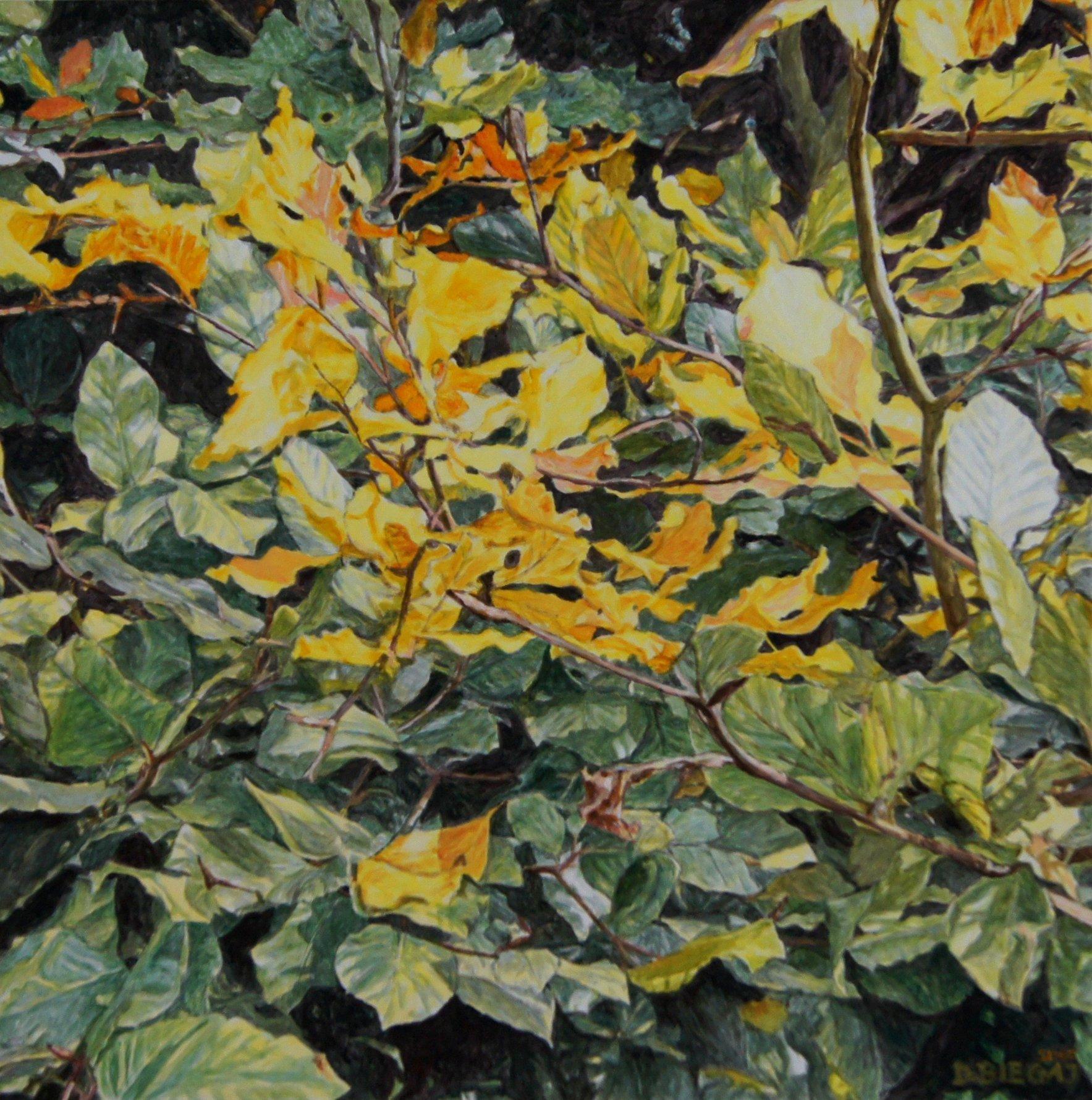 Nature 6 90x90 akryl płótno 2015