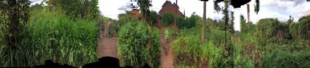 "29°43'46.878""E  1°25'26.4""S (Burera, Kidaho, Rwanda)"