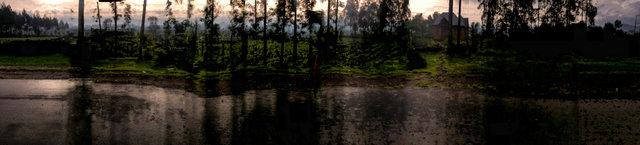"29°41'3.798""E  1°28'55.242""S (RN8, Gacaca, Rwanda)"