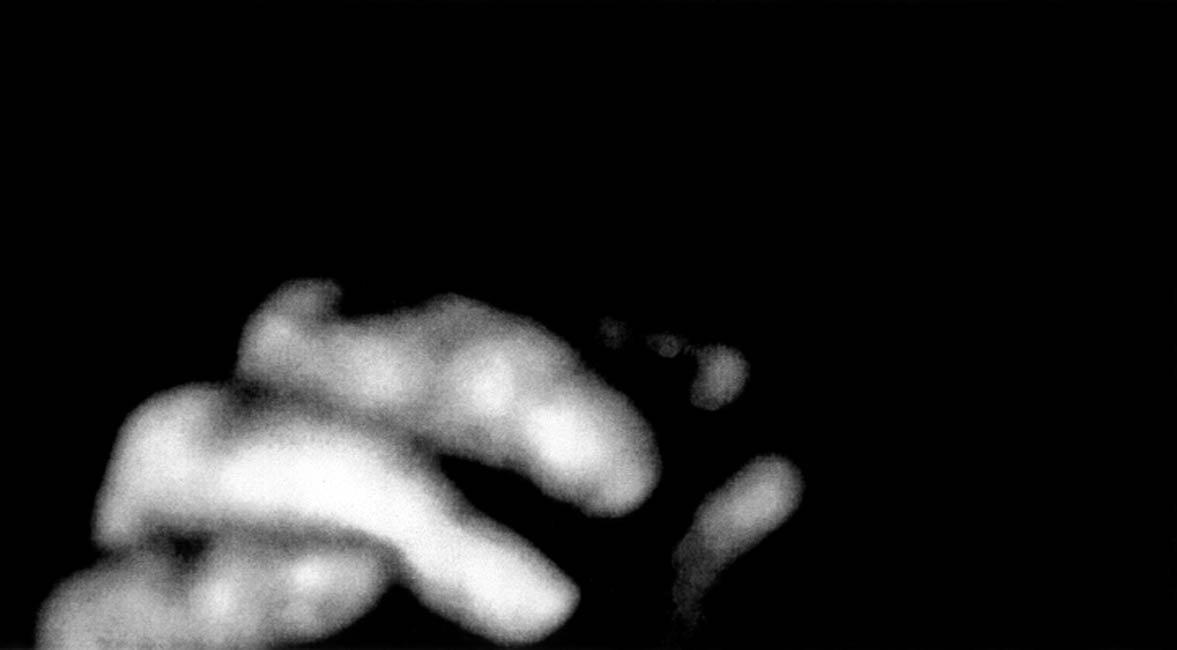 Nan Hoover Gestures No.2 2008
