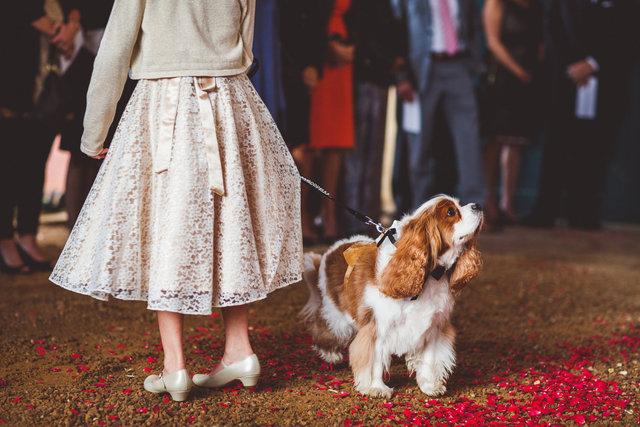 VandR-wedding-246.jpg
