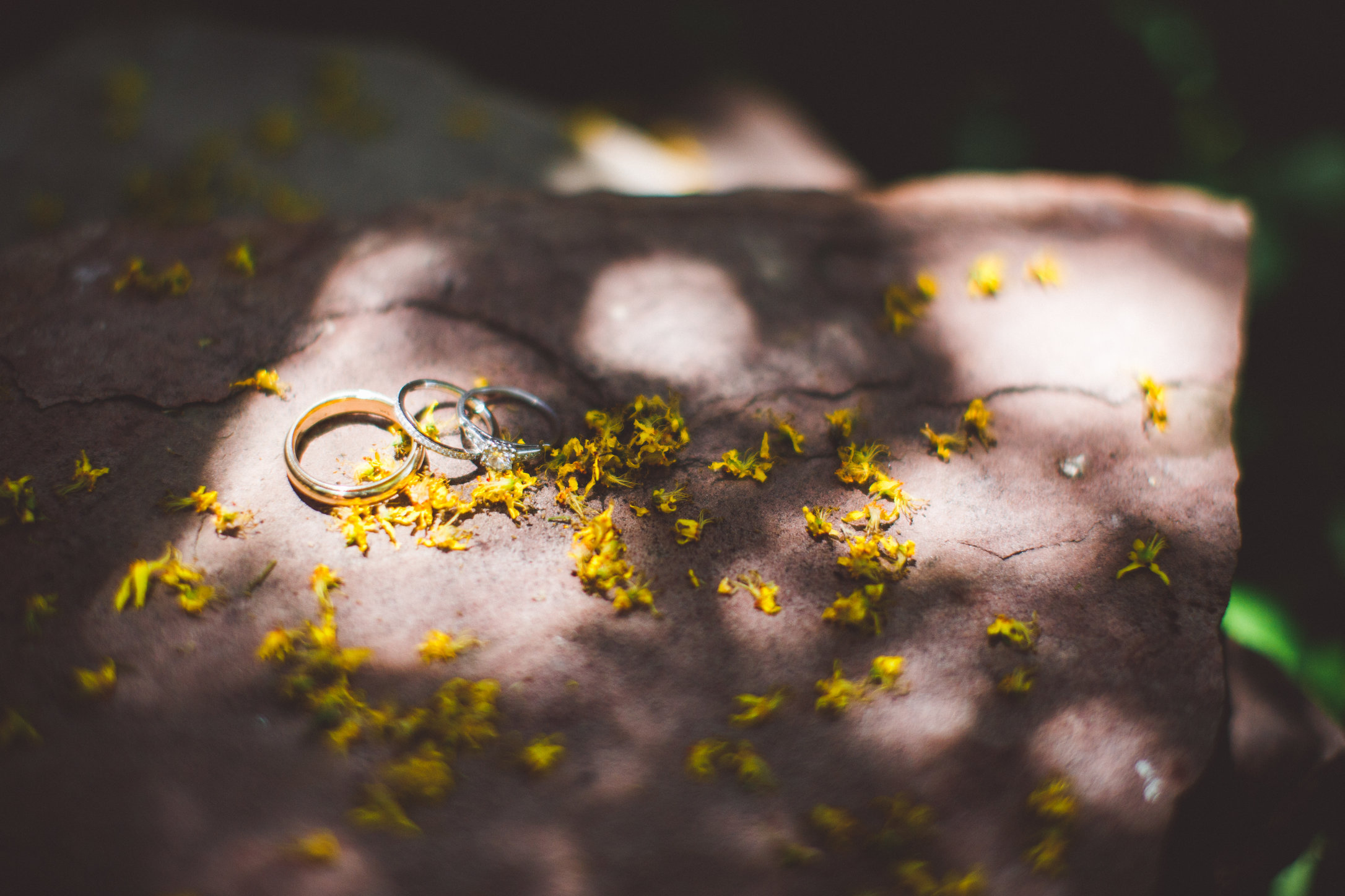 SandC-wedding-32.jpg