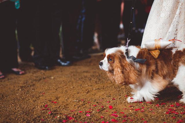 VandR-wedding-247.jpg