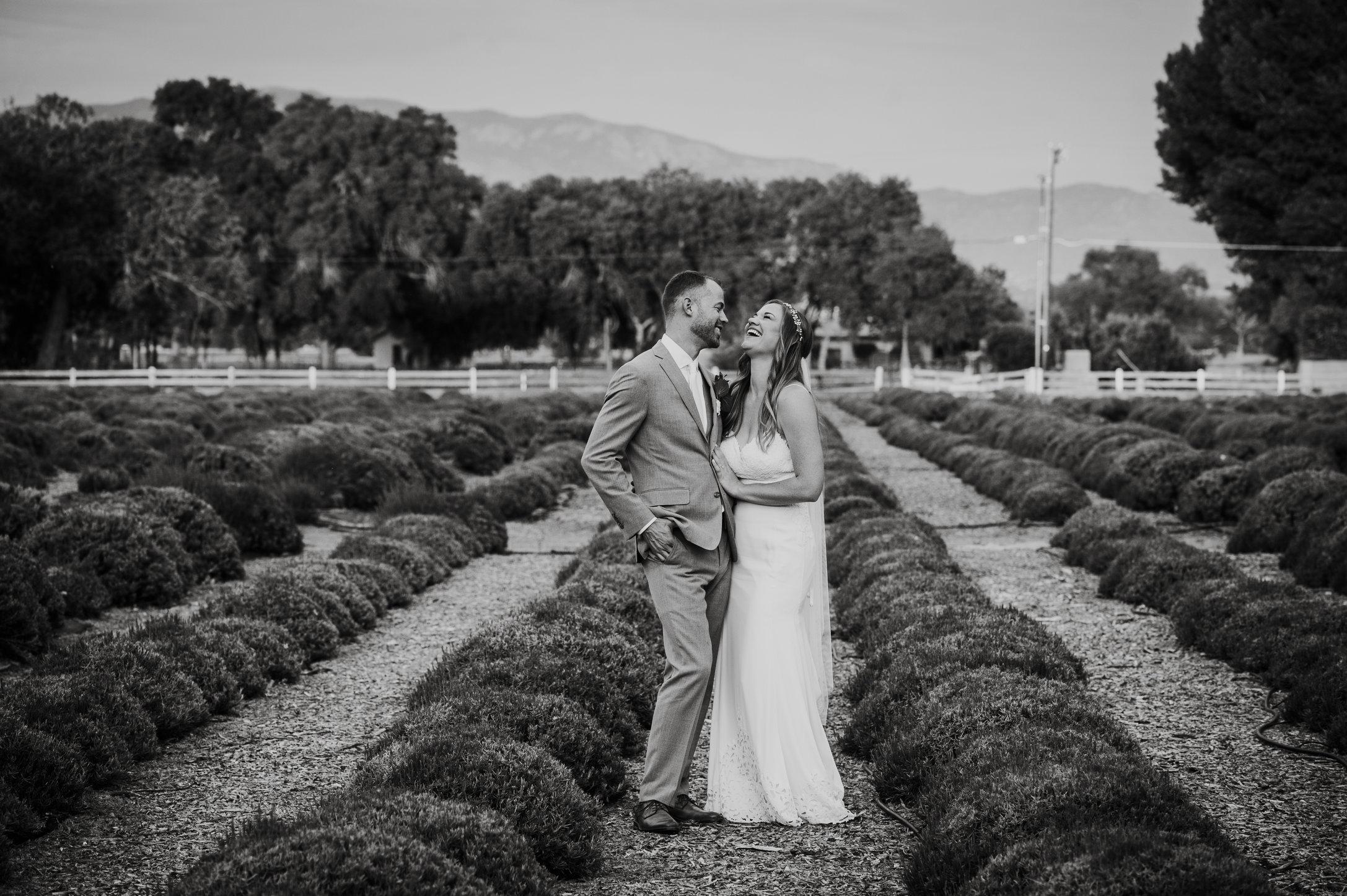 DandA-wedding-733.jpg