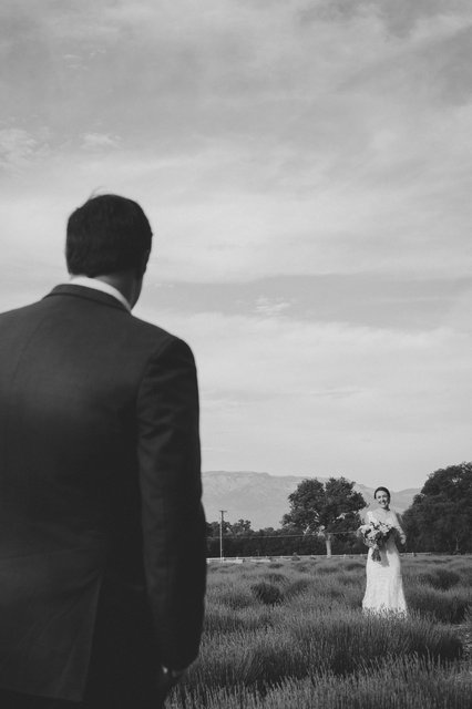 SandC-wedding-550.jpg