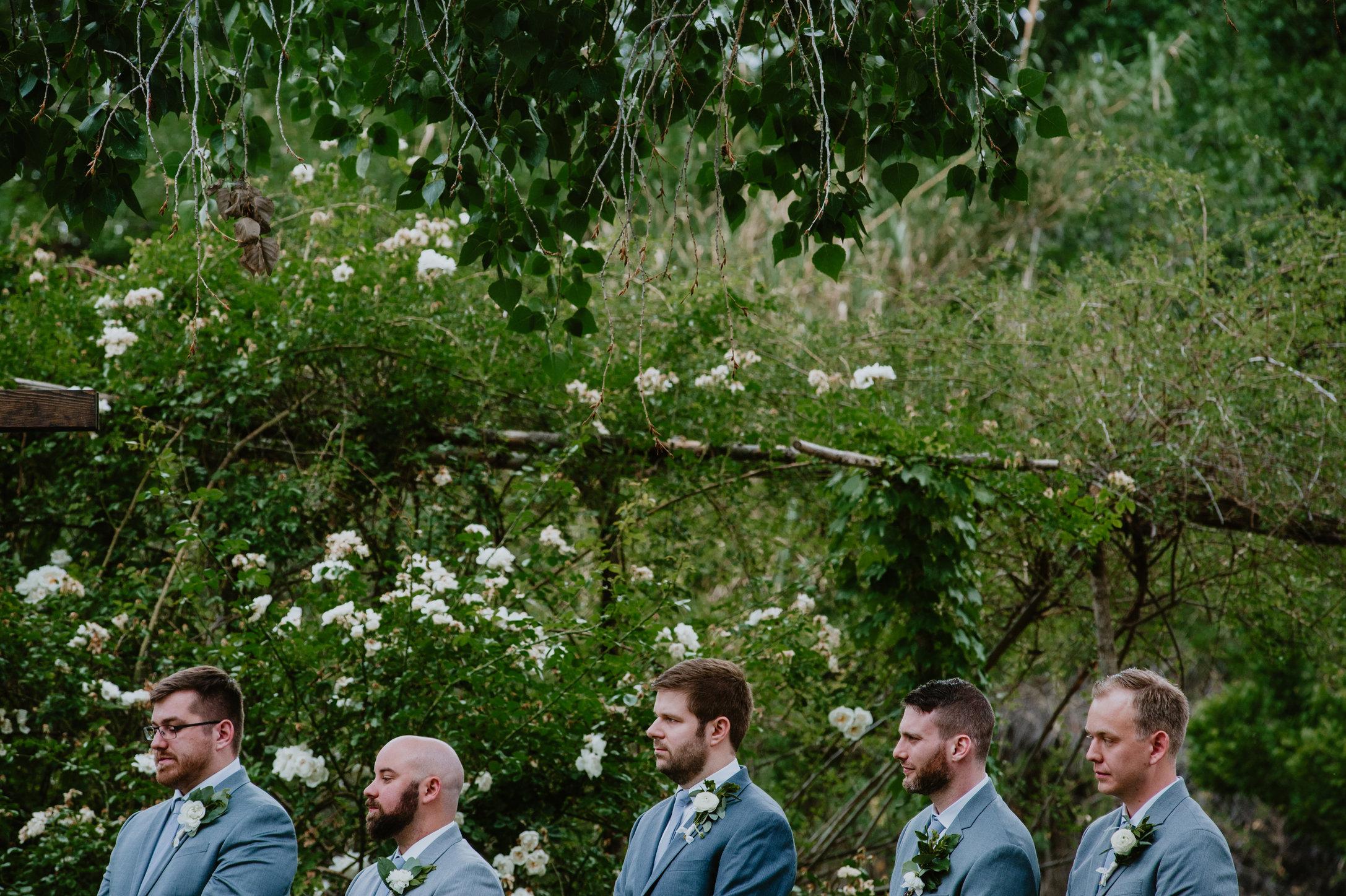 DandA-wedding-300.jpg