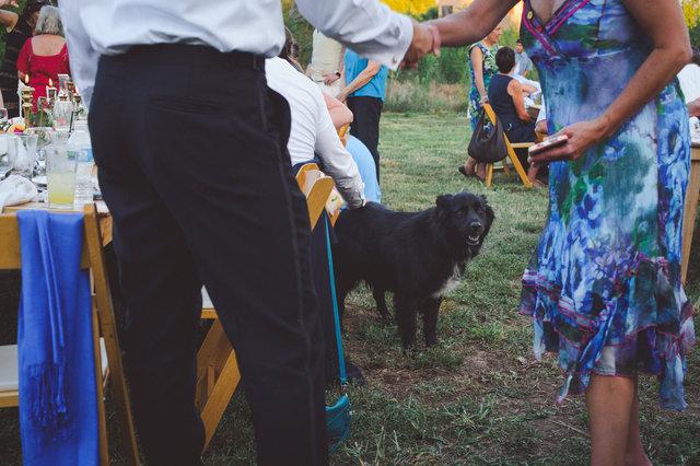 LandC-wedding-577.jpg