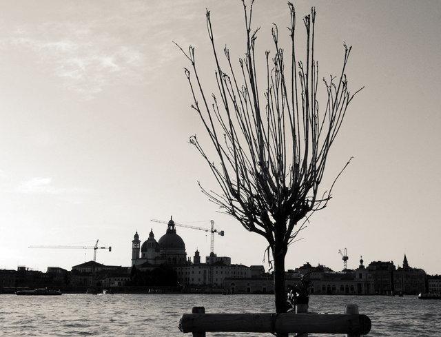 YD_(Venice)_0044.JPG
