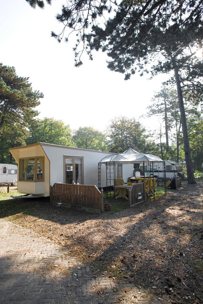 x_x_De Camping_31.jpg