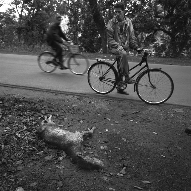 12 Havana 1999 16-18 V4.jpg