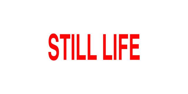 *****NEW Still Life.jpg