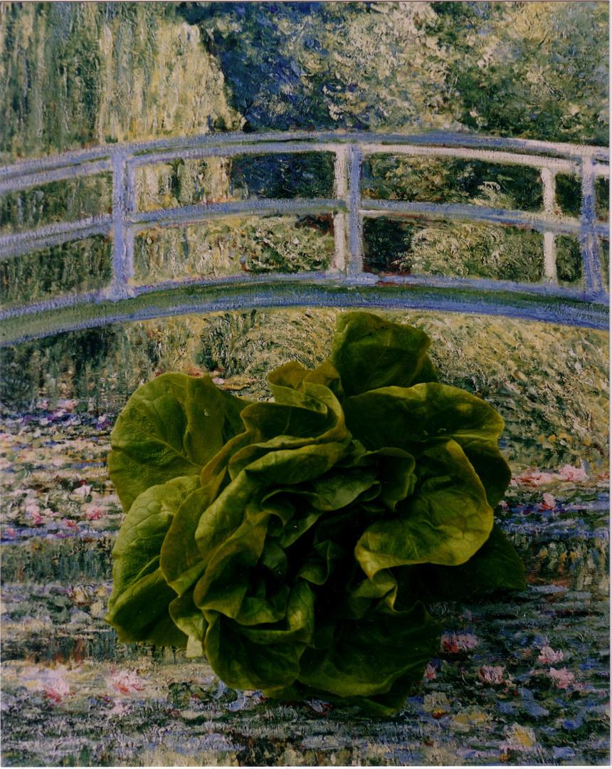 cm with organic lettuce-1.jpg