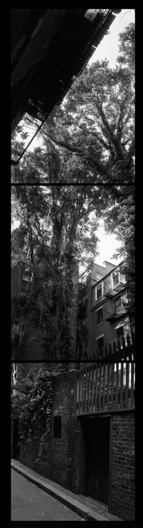 Courtyard6-8-97.jpg