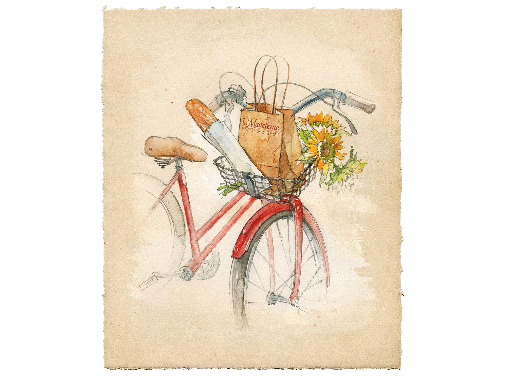 NARDA_Bikebasket_wb.narrative@72.jpg