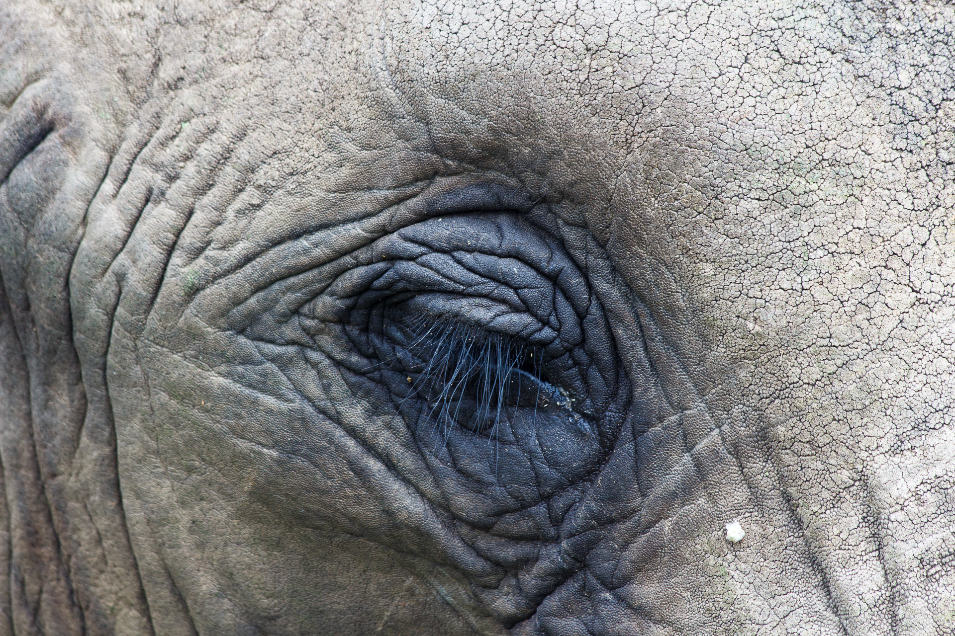 170228_SAfrica-1328.jpg