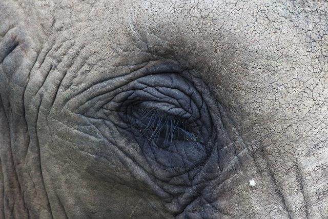 03-170228_SAfrica-1328.jpg