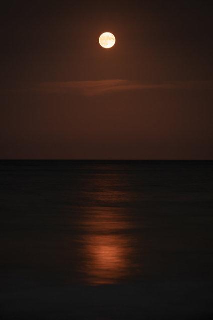 201001-1904_SeaHorizon-088.jpg