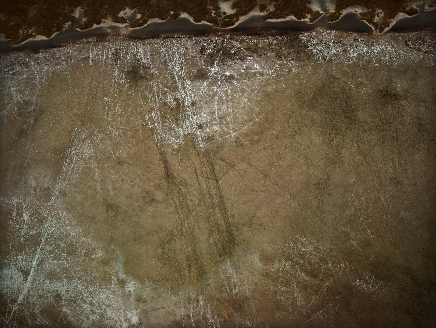 Etosha Tracks 3