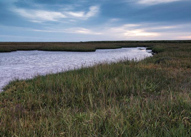 Salt marshes, Blakeney