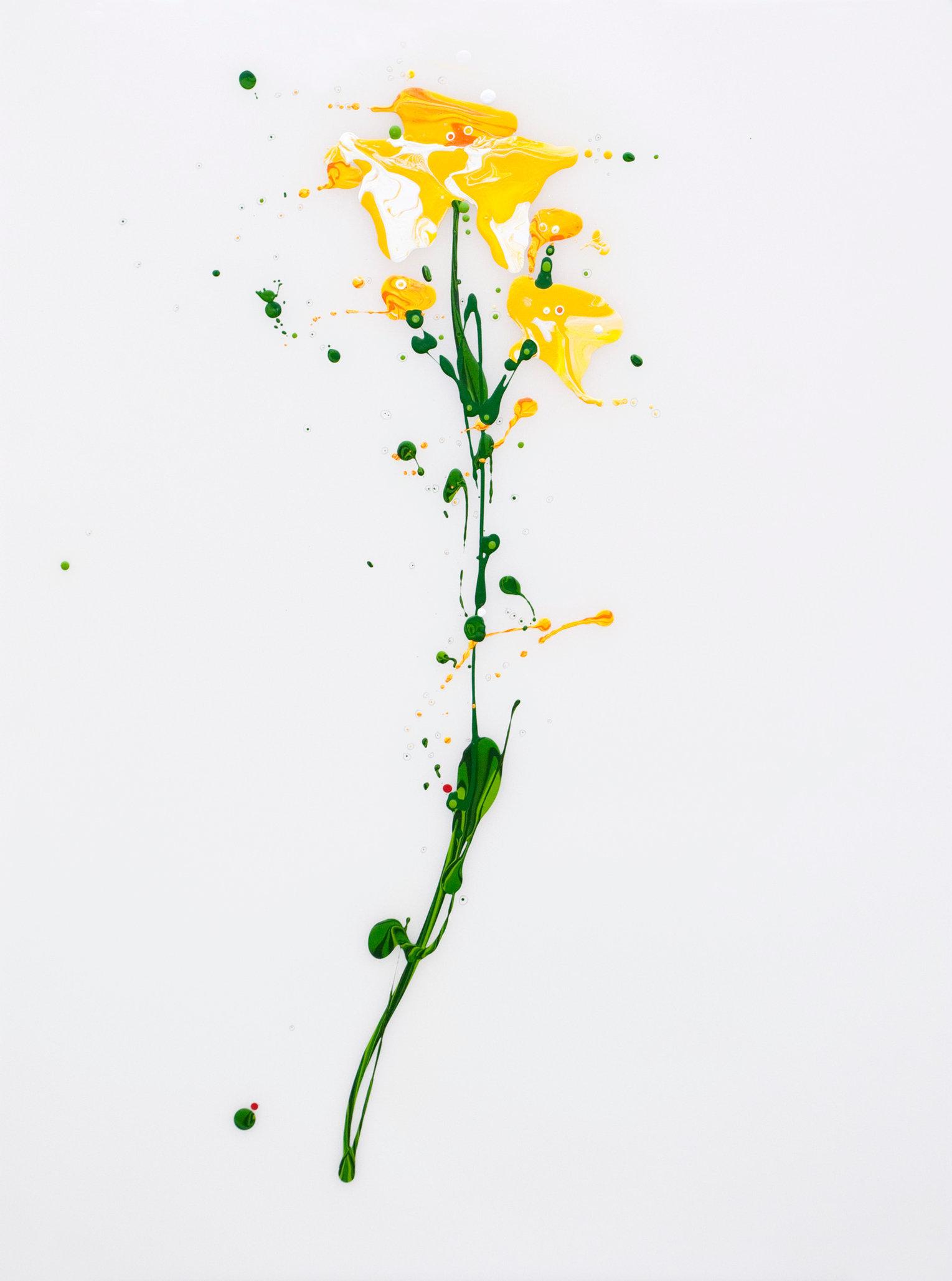 Flora XI