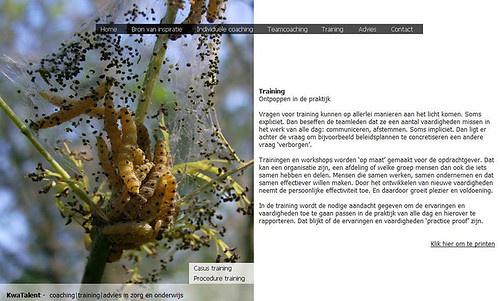 Webdesign for Kwatalent