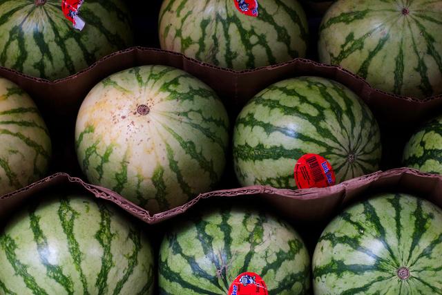 Watermelons-Corrugated Cardboard