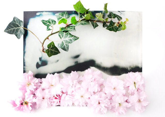 FLOWERS_1_061.JPG