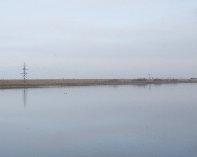 Staines North Reservoir, 2009