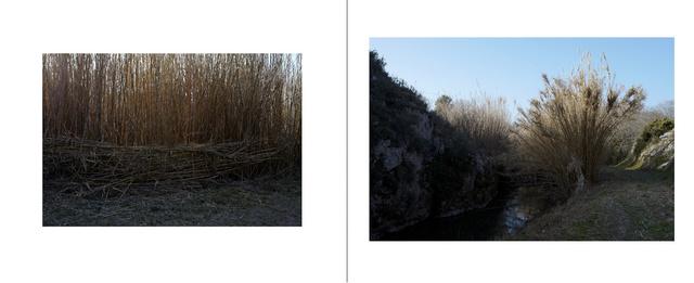 saint_chamas_paysages3.jpg