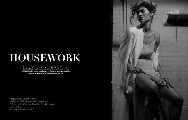 LaPalme Housework Editorial.jpg