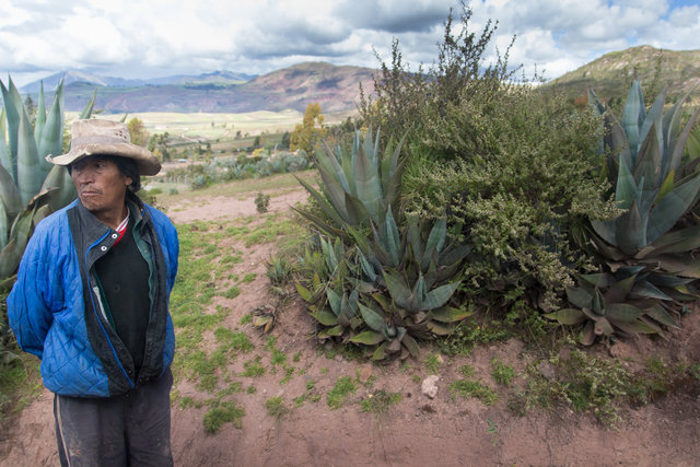 150413_Peru-0440.jpg
