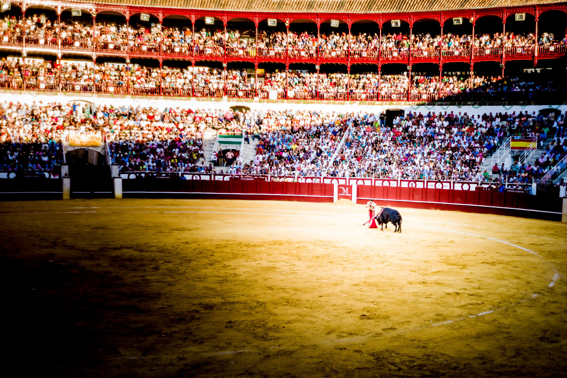 The Bullfight-101.jpg