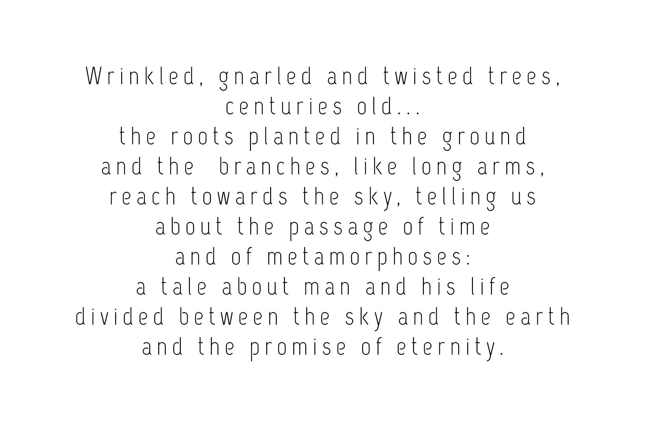 001_intro_Trees_1.jpg