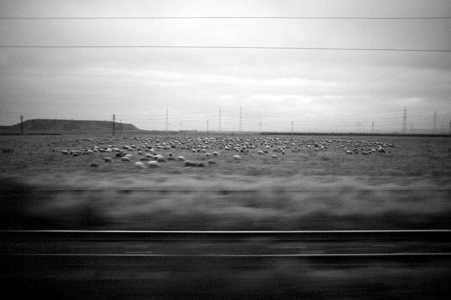 20101027_Train_Sibiu_Bucharest31.jpg