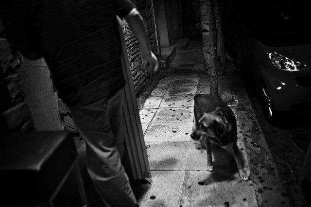 Greece_20114.jpg