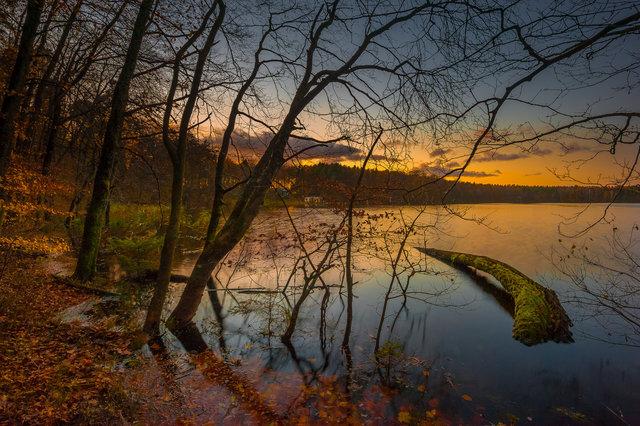 Lake Dłusko
