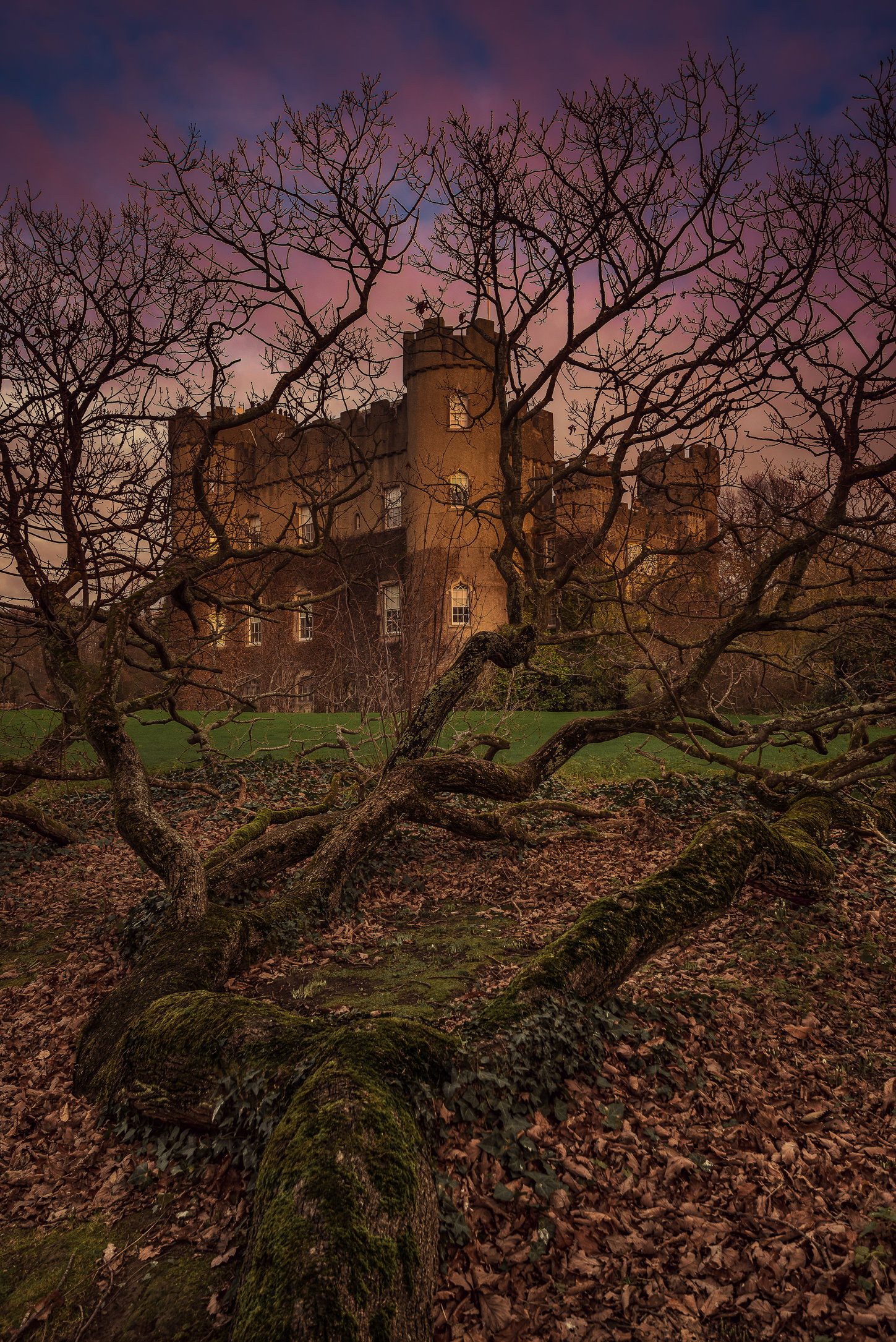 Malahide Castle-MASTER COPY-1.jpg