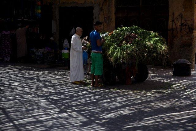 Morocco_056.jpg
